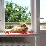 Самостоятельное утепление балкона инструкция. Технология и материалы