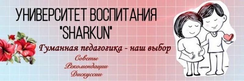 Университет воспитания Шаркун